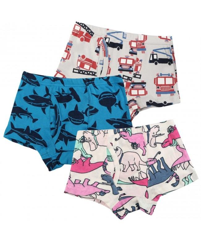 BOOPH Underwear Striped Dinosaur Underpant