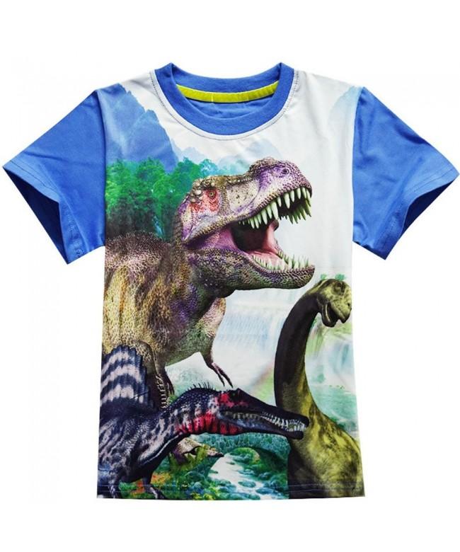 Shirts Toddler Sleeve T Shirts Dinosaur
